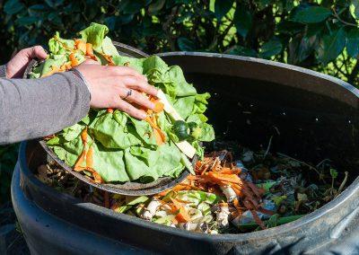 vegetal wastes 01